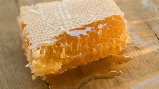 honeycomb wisdom