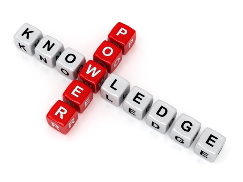 knowledge is power blocks
