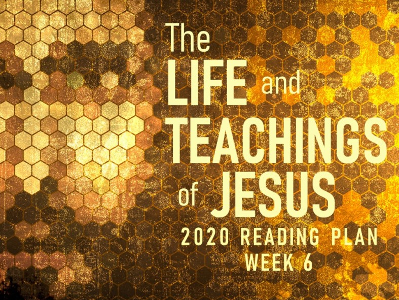 2020 Reading Plan JPEG.jpg